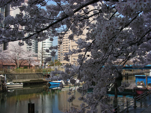 TUKISHIMAGAWA04.jpg