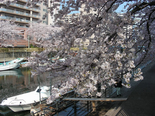 TUKISHIMAGAWA05.jpg