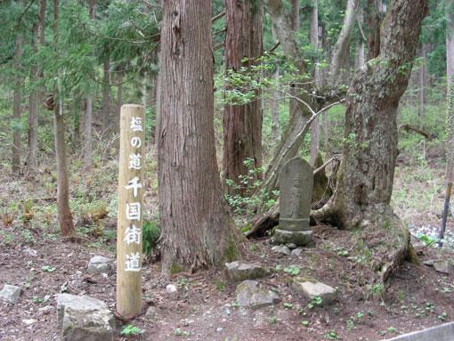 akibasaki10.jpg