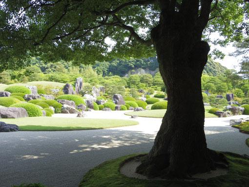 busTasachi02.jpg