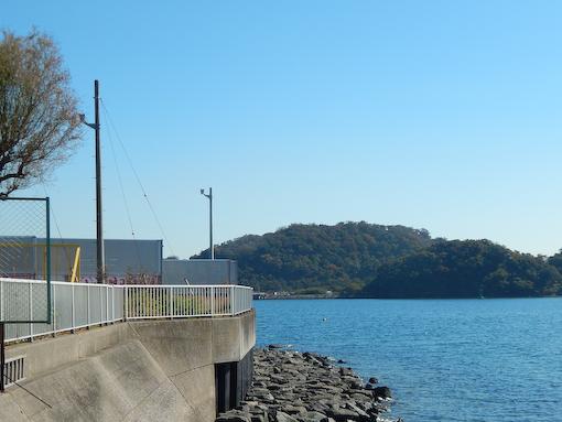 daichinohana-3.jpg