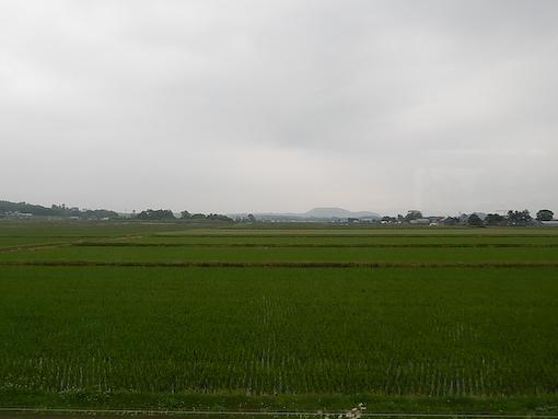 fukagawa-3.jpg