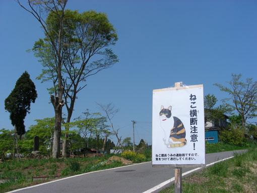 issakasiwabara12.jpg