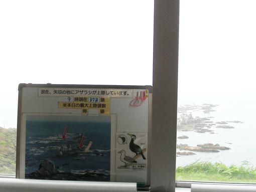 kazenoyakata05.jpg