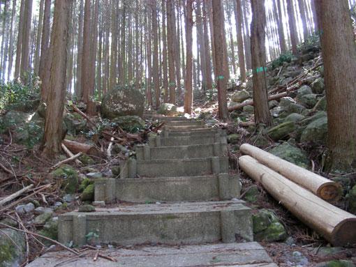 mikizaki05.jpg
