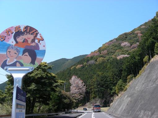 mikizaki13.jpg