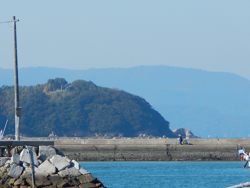 nagasakinohana-3.jpg