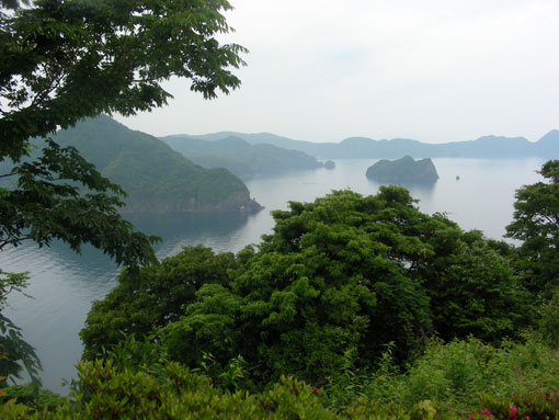 oshimawashihana05.jpg