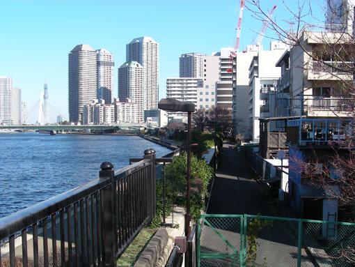 sumidagawa02.jpg