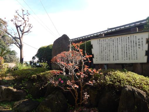 thukudaarasaki-3.jpg