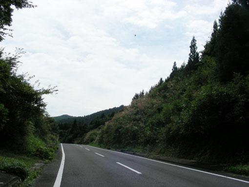 togwzaki06.jpg
