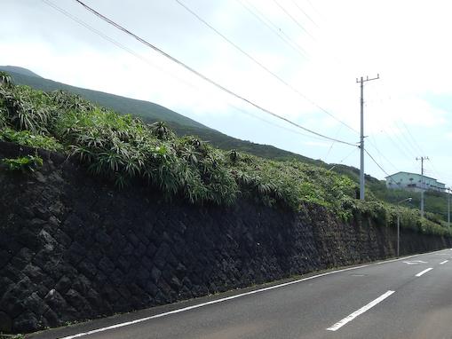tsukiyogahana-14.jpg