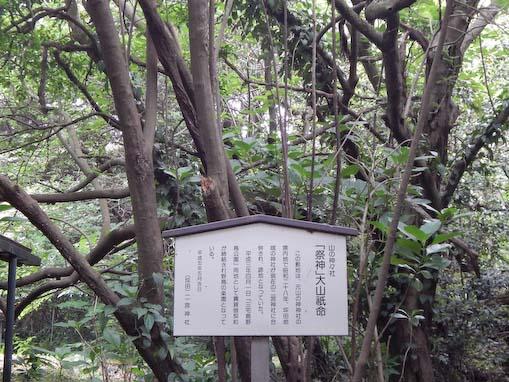 tsurunemisaki-4.jpg