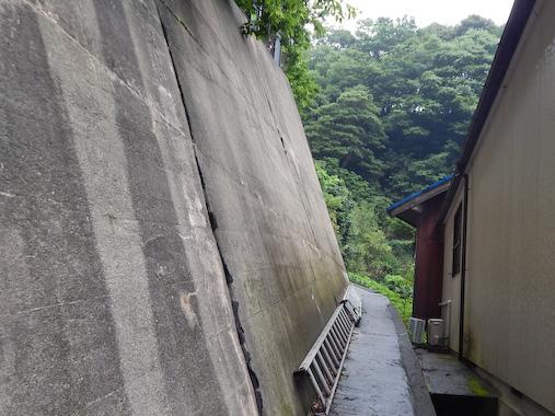 tunekamimisaki-2.jpg