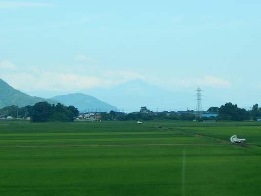 tuzuraozaki-4.jpg