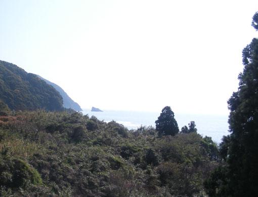 yukitosaki09.jpg